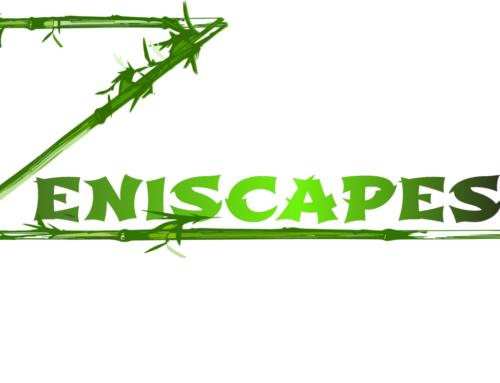 Zeniscapes